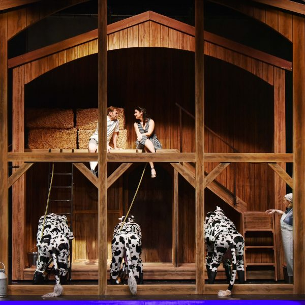 Staatstheater Cottbus IM WEISSEN RÖSSL Operette von Ralph Benatzky Szenenfoto mit (oben): Hardy Brachmann (Dr. Siedler) und Debra Stanley (Ottilie) Foto: Marlies Kross