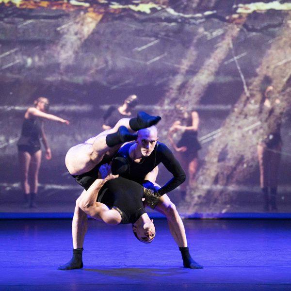 Staatstheater Cottbus SHAKESPEARES SONETTE Ein Ballettabend von Jörg Mannes (Uraufführung) Szenenfoto mit (im Vordergrund): Alyosa Forlini (stehend) und Simone Zannini (Foto: Marlies Kross)